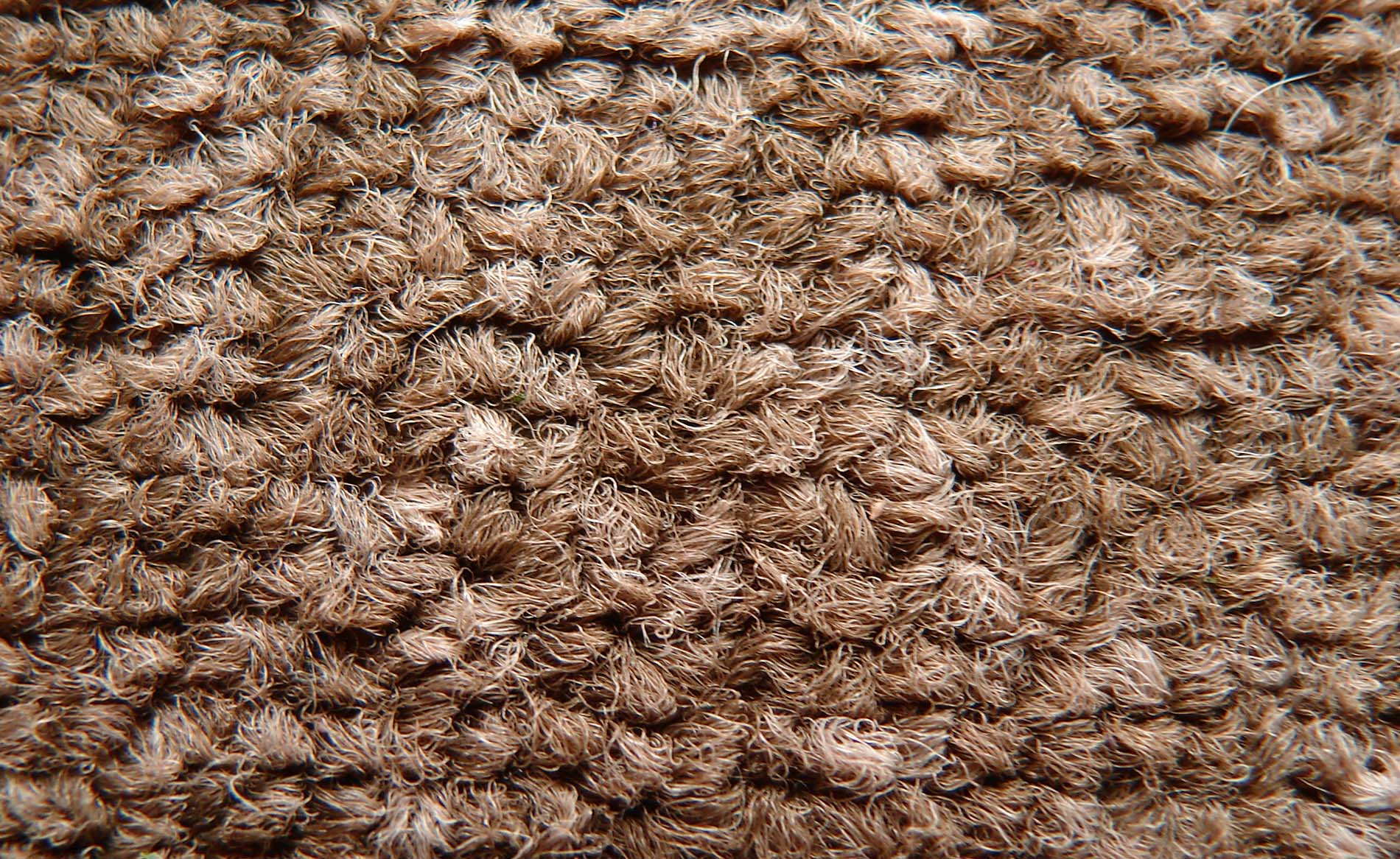 Carpets Oiba
