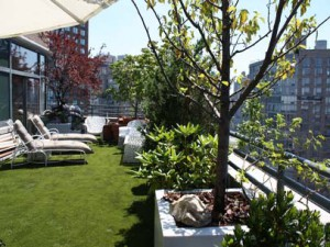 Artificial Grass Oiba